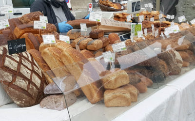 Les pains de Polo