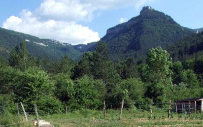 Sorbets Terre du Vallon
